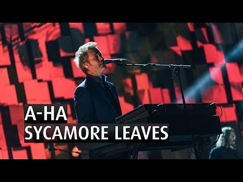 A-HA - SYCAMORE LEAVES - The 2015 Nobel Peace Prize Concert