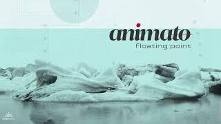 animato floating point original mix