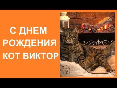 С ДНЕМ РОЖДЕНИЯ, КОТ ВИКТОР