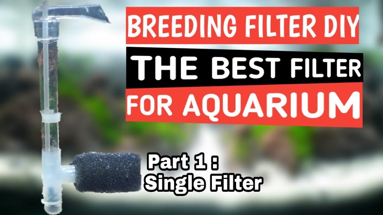 Cara membuat Filter Aquarium Menggunakan Pompa Aerator ...