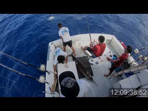 Hawaii Marlin Deep Sea Fishing