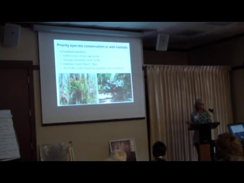 Dr. Jennifer Cruse-Sanders - Orchid restoration in the southeastern United States