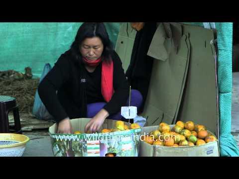 Famous Wokha oranges on sale!