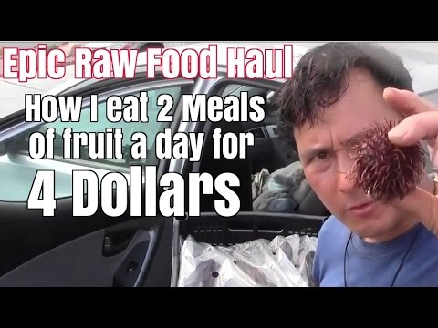 Epic Raw Food Haul - How I Eat 2 Fruit Meals a Day For $4