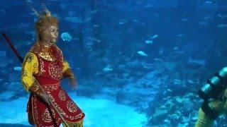 Sun Wukong visits Gong SEA Fa Cai at S.E.A. Aquarium!
