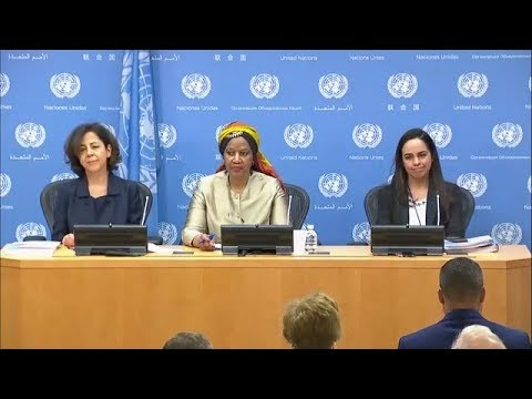 "UN Women on ""Gender Equality in the 2030 Agenda"" - Press Conference (14 February 2018)"