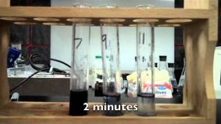 pH Enzyme Lab