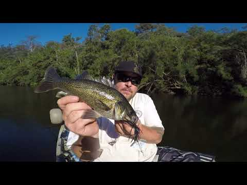 Bass Fishing Nepean River