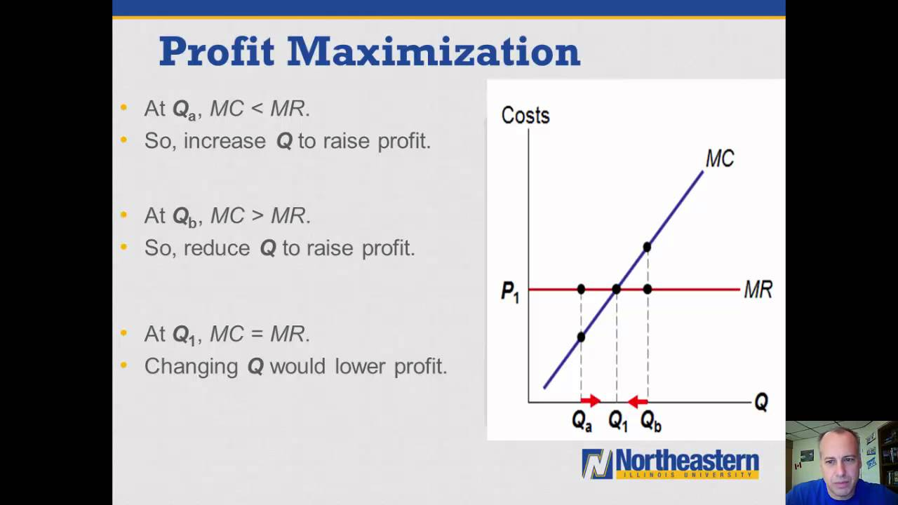 maximazing profit