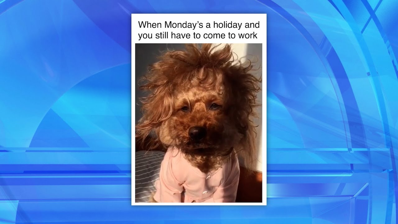 The 'Working on a Holiday' Feels on 'Me Me Monday'