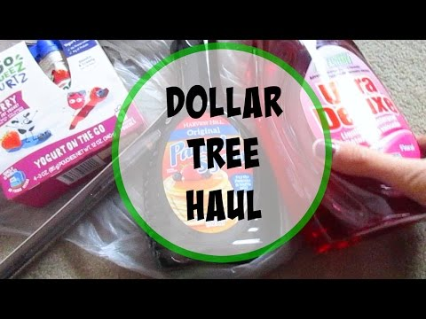 DOLLAR TREE HAUL (12-12-16)