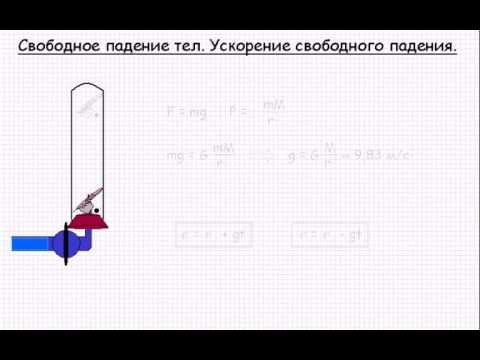 Свободное падение тел  Ускорение свободного падения  Механика  Урок 8