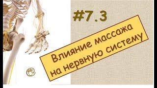 Влияние массажа на нервную систему | Урок 7, часть 3 | Обучение массажу