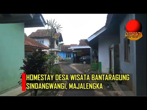 HOMESTAY DESA WISATA BANTARAGUNG