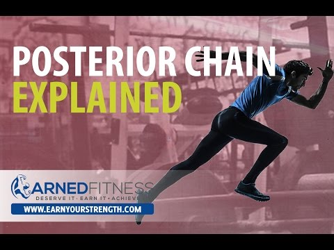 EARNYOURSTRENGTH - Posterior Chain - Explained