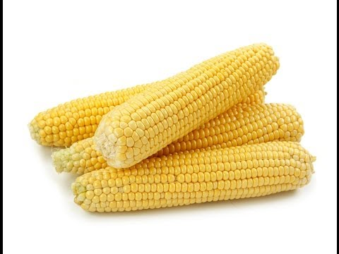 Top 10 Largest Corn Producing Countries