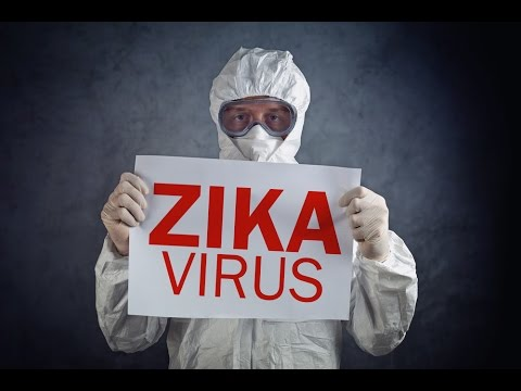 The Truth Behind the Zika Virus