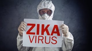 The Truth Behind the Zika Virus thumbnail