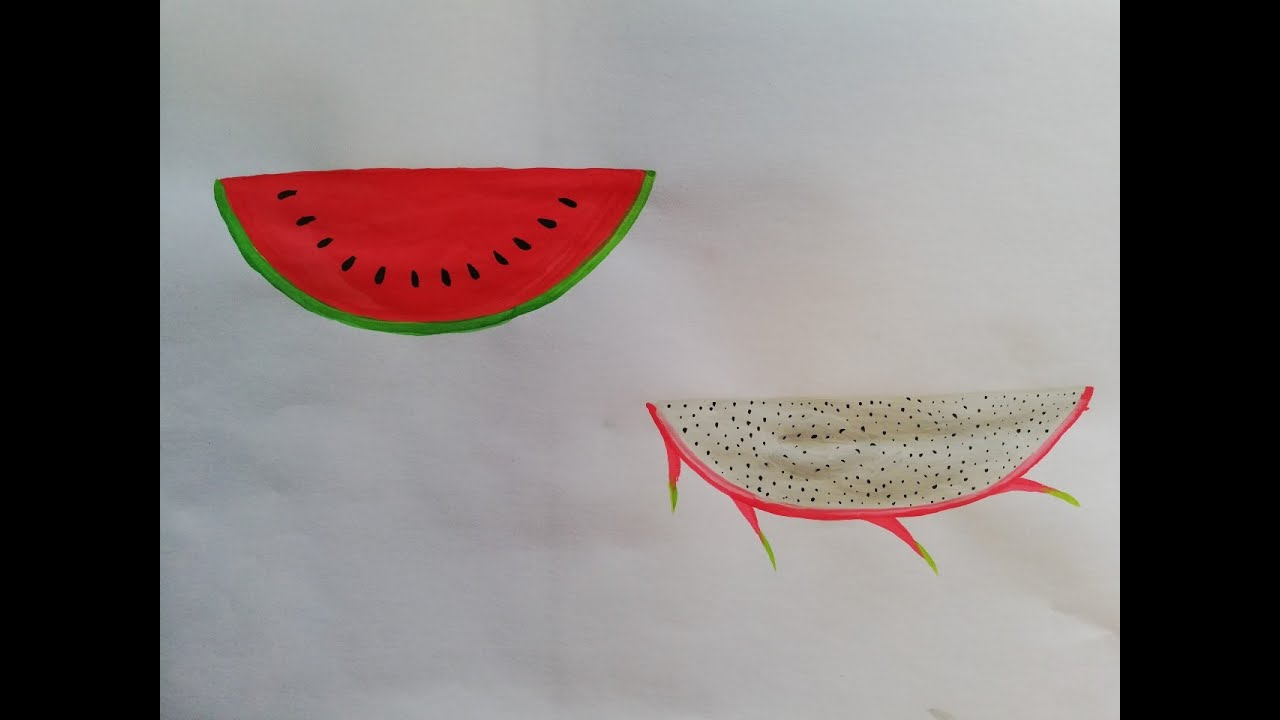 Yêu hội họa – vẽ trái cây – dưa hấu, thanh long –  draw fruit