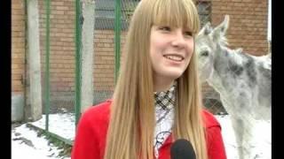 Осел напердел при записи интервью / Donkey fart