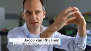 Jacco van Rheenen from Hubrecht Institute and UMC Utrecht talks about cancer stem cells