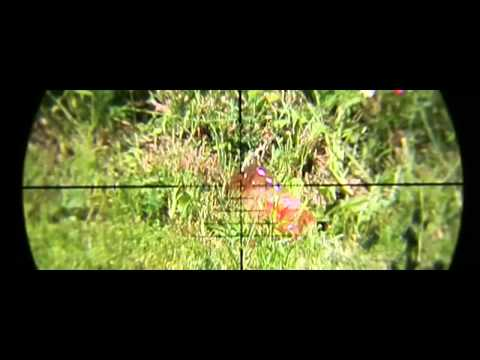 Scope camera slow motion videos (400fps)