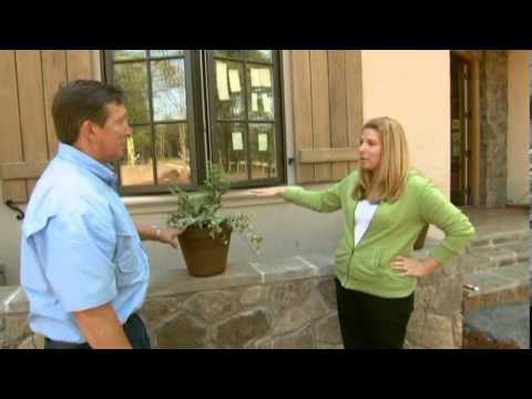 For Your Home by Vicki Payne Episode 2501 Welcome to the Dream Home