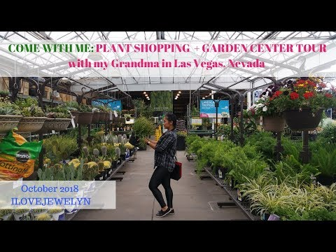 Come With Me: Plant Shopping + Tour | Garden Center | Las Vegas | Oct 2018 | ILOVEJEWELYN