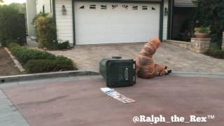 Even chores such as the trash always give Ralph the Rex a hard time...