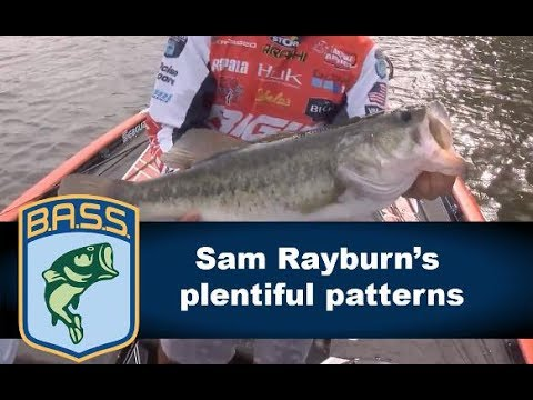Sam Rayburn's plentiful patterns