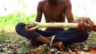 Primitive Technology   Shoot Rabbit by catapult in Forest   Cooking Rabbit eating Yummy