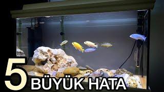 Akvaryum Balıkları Neden Ölür?