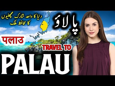 Travel to Palau | Full Documentary and History About Palau In Urdu & Hindi | پالاؤ کی سیر