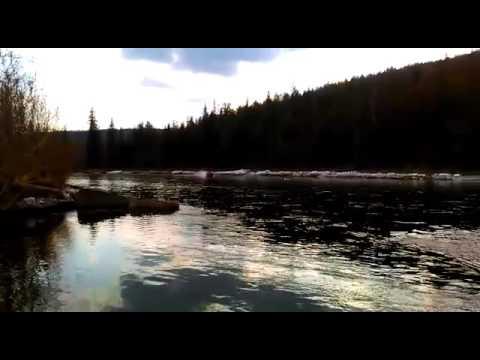Мотор-весло 15 л.с. лодка Абакан jet 380 - YouTube