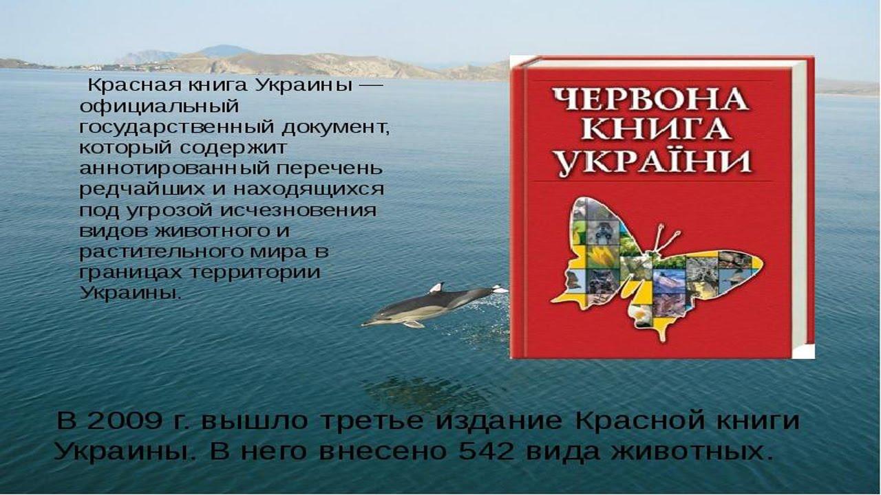 Животные в красной книге украины реферат 6680
