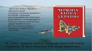 """Красная книга  Украины ""-животные"