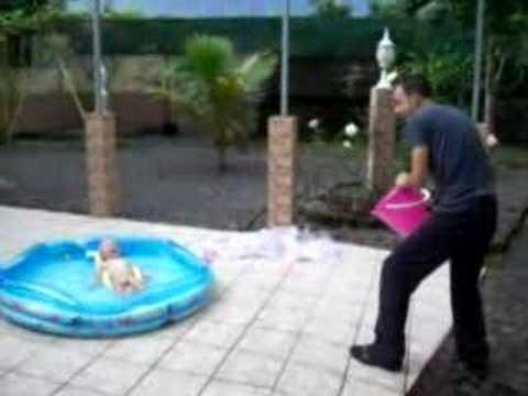 Doudou et la piscine youtube for Choupi et doudou a la piscine