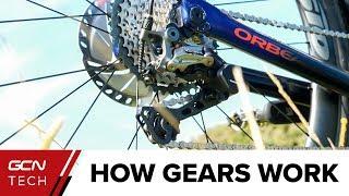 How Do Bike Gears Work Bicycle Gears Explained Youtube
