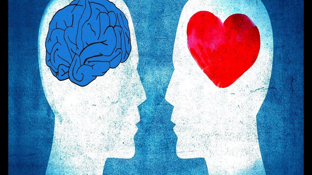 L'intelligence émotionnelle Daniel Goleman YouTube