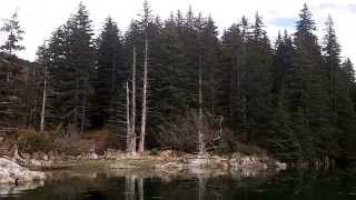 Alaska rare remote property for SALE!