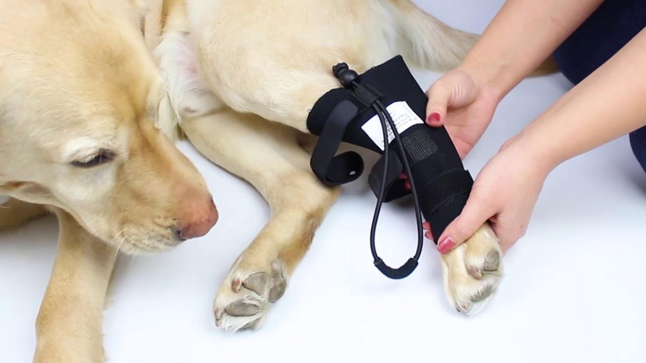 No-Knuckling Training Sock Instructional Video!