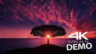 4K VIDEO UltraHD HDR Sony 4K VIDEOS Demo
