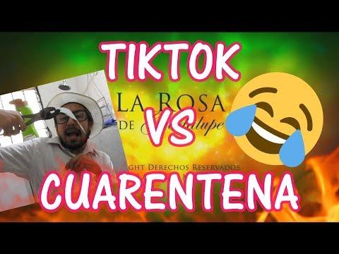 PARODIA CUARENTENA VS TIKTOK / LA ROSA DE GUADALUPE (SKETCH)