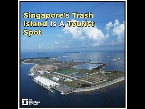 Singapore's Trash Island Is A Tourist Spot