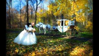 С Днём Свадьбы!!! Осенние Свадьбы!!!