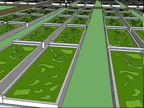 Sketchup Algae Farm Simulation
