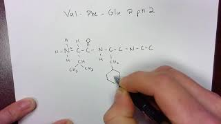 Drawing a tripeptide at pH 2