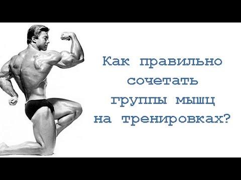 ГЛАВА 3 ФИЗИОЛОГИЯ ТРУДА -