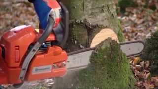 Chainsaw Husquarna, THG Rental and Sales, Rental Equipment, Clearwater, FL