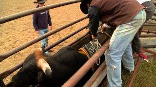 Train a Bull to Buck - Hell on Hooves: Season 4